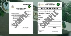 cho-online- medical-certificate