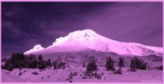 pink-snow-in-italian-alps