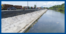 dpwh-dike-construction-update