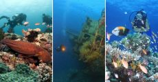 top-diving-spots-in-the-philippines-2020